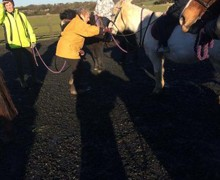 Year 5 try horse riding for the morning2